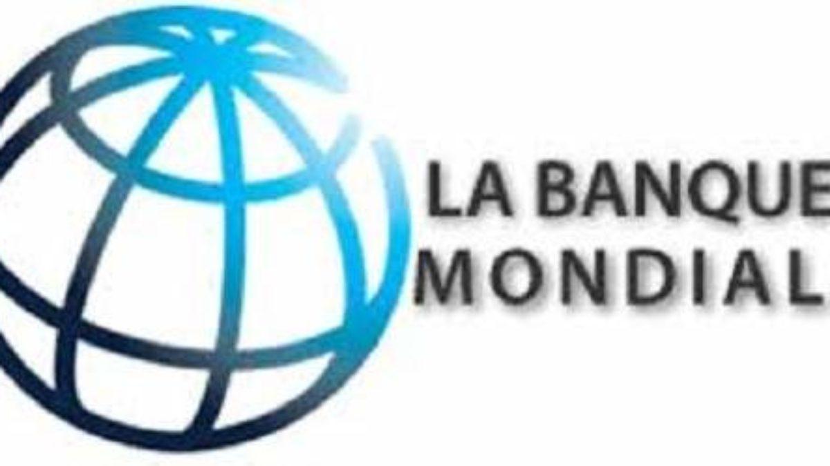 Banque Mondiale - Institution financière